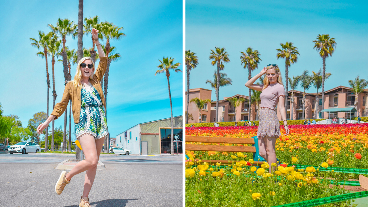 Taking beautifully bright picture of the spring spots in Carlsbad San Diego